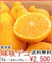 熊本産かんきつ 味咲デコ5玉