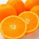 アメリカ産ネーブルオレンジ大10玉...