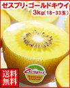 9月1日キウイの日特別企画ゼスプリゴールドキウイ3kg箱(18玉〜33玉)