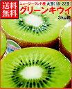 ゼスプリキウイフルーツグリーンキウイ大3kg箱(18-22玉)