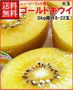 ゼスプリキウイフルーツゴールドキウイ大玉3kg箱(18-22玉)
