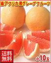 暑い夏に体を潤すジューシーな果汁!南アフリカ産グレープフルーツ赤小10玉送料無料\2,160