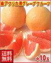 暑い夏に体を潤すジューシーな果汁!南アフリカ産グレープフルーツ赤中10玉送料無料\2,480