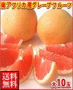 お中元ギフト対応可南アフリカ産グレープフルーツ赤大10玉送料無料\3,240