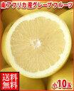 暑い夏に体を潤すジューシーな果汁!南アフリカ産グレープフルーツ白小10玉送料無料¥2,160