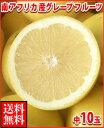 暑い夏に体を潤すジューシーな果汁!南アフリカ産グレープフルーツ白中10玉送料無料\2,480