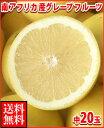 暑い夏に体を潤すジューシーな果汁!南アフリカ産グレープフルーツ白中20玉送料無料\¥3,480