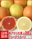 暑い夏に体を潤すジューシーな果汁!南アフリカ産紅白グレープフルーツ小20玉送料無料\2,980