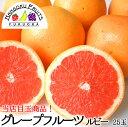 【送料無料】 当店イチ押し 訳ありグレープフルーツ約25玉(1玉当たり約250g)