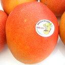 メキシコ産アップルマンゴー(ドン・ルイス)3玉送料無料¥5,980