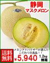 静岡マスクメロン1玉桐箱送料無料¥5,940