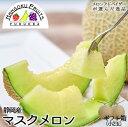 【送料無料】静岡マスクメロン2玉(1kgx2玉)ギフト箱産地応援価格