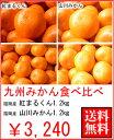 お歳暮・ギフト九州みかん食べ比べ(紅まるくん)(山川みかん)