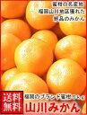 お歳暮ギフト対応可福岡産山川みかん5kg箱送料無料¥3,480