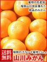 お歳暮ギフト対応可福岡産山川みかん2.5kg箱送料無料¥2,160