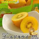 ゼスプリキウイフルーツゴールドキウイ3kg箱(30-33玉)北海道・沖縄は別途送料¥1,000がかかります。