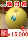 お歳暮・ギフト熊本産 晩白柚(ばんぺいゆ)6玉