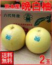 お歳暮ギフト熊本産 晩白柚(ばんぺいゆ)2玉送料無料¥5,980