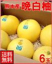 お歳暮ギフト熊本産 晩白柚(ばんぺいゆ)6玉送料無料¥15,000