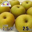 【送料無料】九州産 幸水 梨 2.5kg