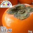 【送料無料】福岡産 富有柿 約5kg (16~20玉)