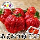 【予約販売 送料無料】福岡産 あまおう苺 グランデ 2パック