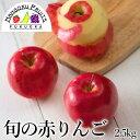【送料無料】旬の赤りんご 2.5kg(8-10玉)