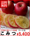 究極の蜜入リンゴ青森産こみつ8〜12玉