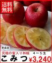 お歳暮早期割引究極の蜜入リンゴ青森産こみつ4〜5玉