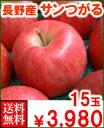 長野産サンつがる15玉送料無料¥3,980