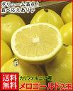 カリフォルニア産メロゴールド2玉1.5kg箱送料無料¥2,480