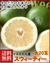 予約販売冬限定イスラエル産スウィーティ—大20玉送料無料¥4,500