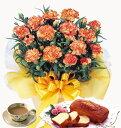珍しい花色で人気上昇中0330アップ祭2オレンジカーネーション鉢植えとチーズケーキのセット