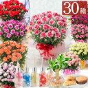 母の日 カーネーション 鉢植え ギフト プレゼント 選べる10種の花 赤 ピンク オレンジ パープル イエロー 変り咲き 香り と選べる幸せ特典幸福の木ハーバリウム ディフューザー花とスイーツのセットも!