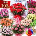 母の日カーネーション鉢植えギフト 早割 母の日 プレゼント 選べる花色とお母さんも大満足の幸せ特典がいっぱい