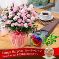 【母の日】カーネーション鉢植えギフト!選べる花色とお母さんも大満足の幸せ特典がいっぱい
