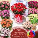 【母の日ギフト】早期特典カーネーション鉢植えギフト!選べる花...