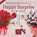 【母の日ギフト】早期特典カーネーション鉢植えギフト!選べる花色とお母さんも大満足の幸せ特典がいっぱい...