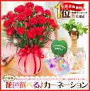 ポイント10倍【母の日ギフト】累計10万人以上のお母さんに花と幸せをプレゼント!花色選べるカーネーション鉢植え【楽ギフ_包装】【楽ギフ_メッセ】P27Mar15
