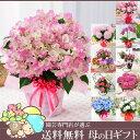 母の日ギフトブーゲンビレア、バラ、アジサイから選べる季節の鉢花ギフトC