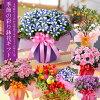 秋咲きの鉢花のイメージ