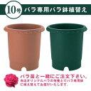 バラ専用 10号鉢 バラ鉢に植えてお届け リッチェル プラ製、容量約11リットル ※同梱不可※(植替え)