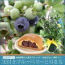 2016【父の日ギフト】実付きブルーベリー鉢植えと月まるセット 05P27May16