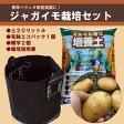 とっても簡単!春ジャガ【エコ栽培セット】(オリジナル土、Gバッグ、種じゃがいも2)