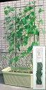 グリーンカーテンの必須アイテム、キュウリやゴーヤやアサガオの栽培に・・・・野菜ネット棚セット プランター栽培用 サイズ幅75cm×高160cm×奥30cm