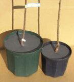 【鉢キャップ】コガネムシ産卵防止不織布 6号鉢用(直径17.3cm)