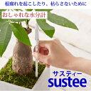<水やり簡単>sustee(サスティー)水分計 【メール便可】