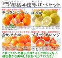 【送料無料】一度に全部味わえる福袋♪3月の柑橘食べくらべ「満足」セット
