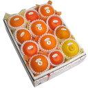 【送料無料】季節の柑橘詰合せセット5,000円