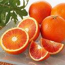 国産(愛媛産)ブラッドオレンジ(タロッコ)家庭用約7kg